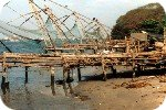 Chinese fishing nets in Cochin harbour